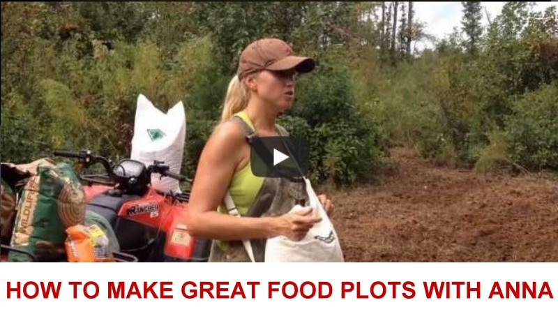 how to make                   great food plots